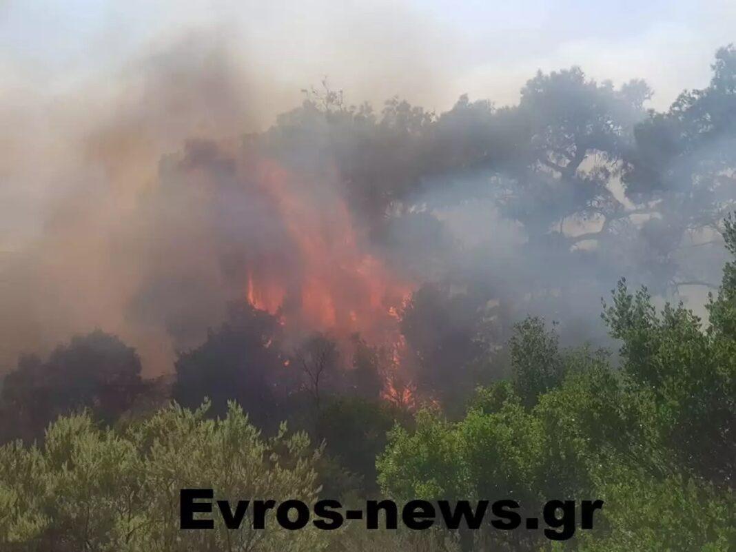Μεγάλη-φωτιά-στον-Έβρο-–-Εκκενώνεται-περιοχή-στο-Σουφλί