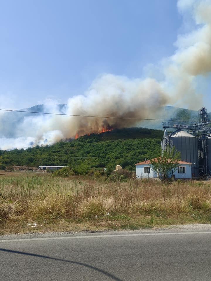 Πυρκαγιά-στους-Αντιφιλίππους-του-Δήμου-Παγγαίου-video