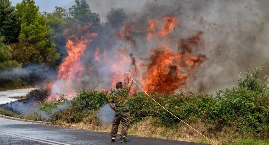 Φωτιά-στη-δασική-έκταση-Χαλάζι-στο-Σουφλί