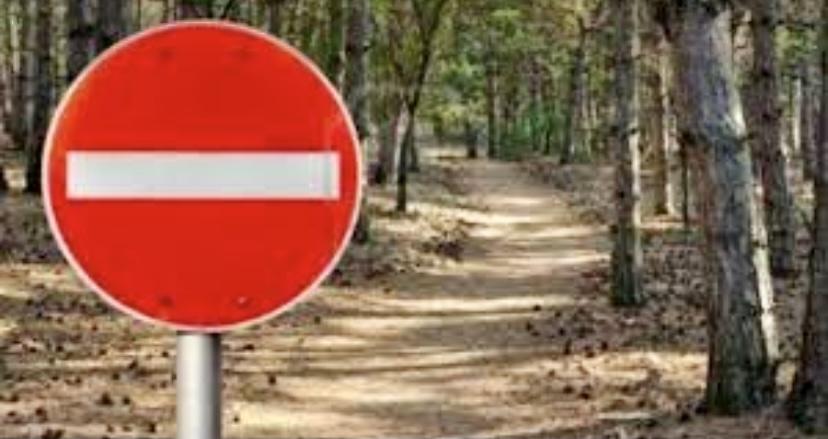 Απαγόρευση-κυκλοφορίας-σε-δασικές-εκτάσεις-της-Θάσου-λόγω-του-πολύ-υψηλού-κίνδυνου-πυρκαγιάς-(κατηγορία-κινδύνου-4)-από-07-09-2021