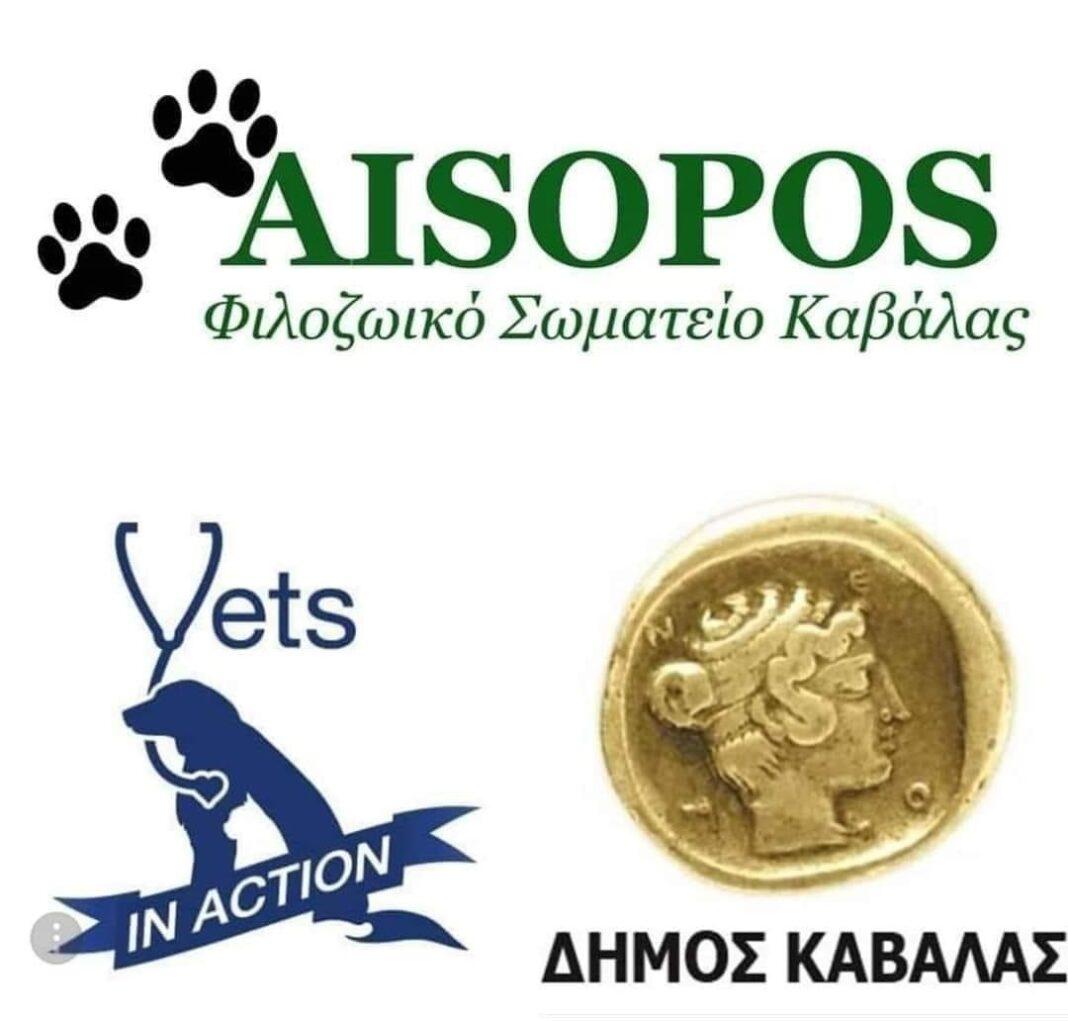 ΔΗΜΟΣ-ΚΑΒΑΛΑΣ-/-Φιλοζωϊκό-Σωματείο-Καβάλας-«Αίσωπος»-/-vets-in-action:-Δωρεάν-στειρώσεις-σε-αδέσποτα-ζώα