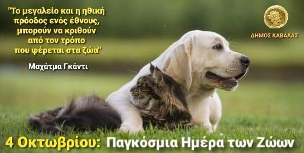 Μήνυμα-του-Δημάρχου-Καβάλας,-Θόδωρου-Μουριάδη,-για-την-Παγκόσμια-Ημέρα-των-Ζώων-(4-Οκτωβρίου)